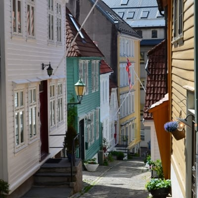 Nordnes Neighborhood